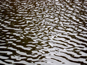 http://commons.wikimedia.org/wiki/File:Water_Ripples_1.jpg