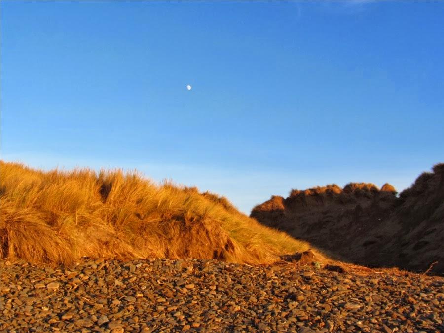 Saunton sand dunes