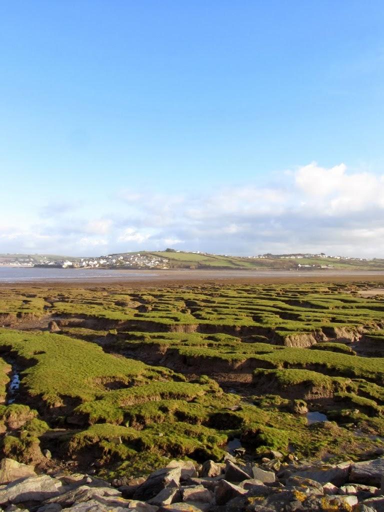 estuary at westward ho