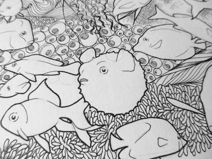 Fish doodle art by Clare Willcocks