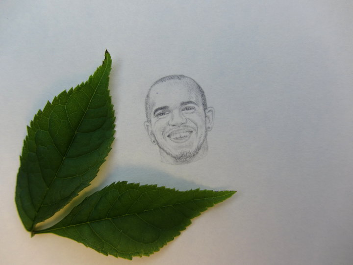Lewis Hamilton portrait