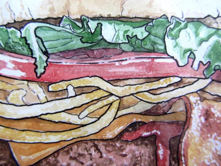 burger - food illustration
