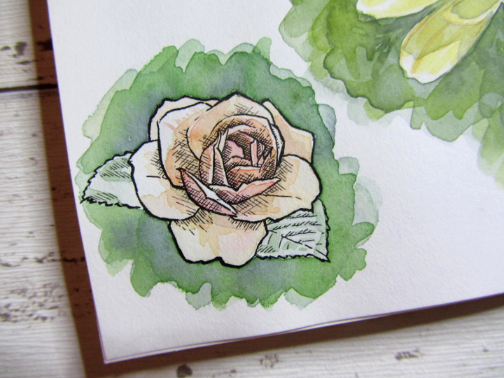 Pen ink and watercolour rose