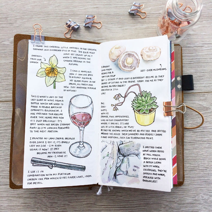 Midori traveler's notebook spread with watercolour paintings of a daffodil, wine glass, ink pen, mushrooms, succulent plant and rocks